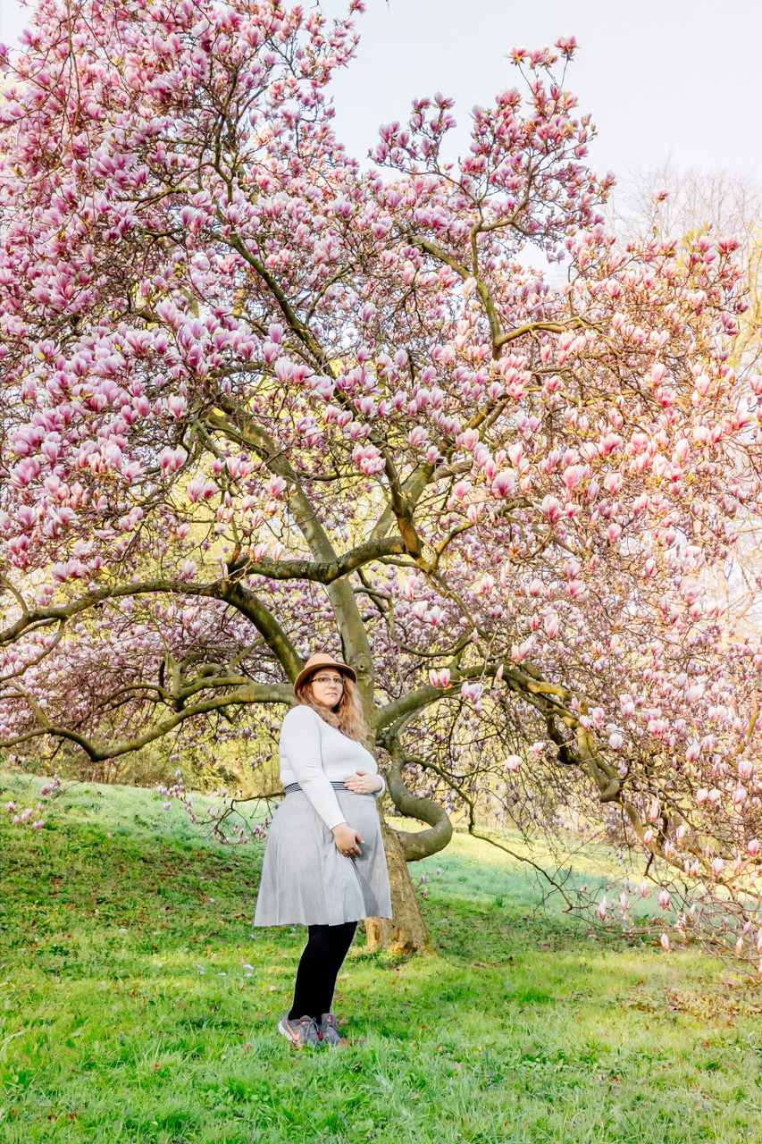 Babybauchfotos in den Magnolien Dresden