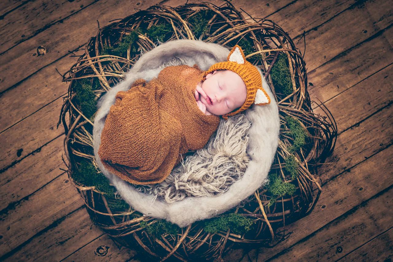 Babyfotos Dresden Baby im Fuchs Kostüm Newbornfotos