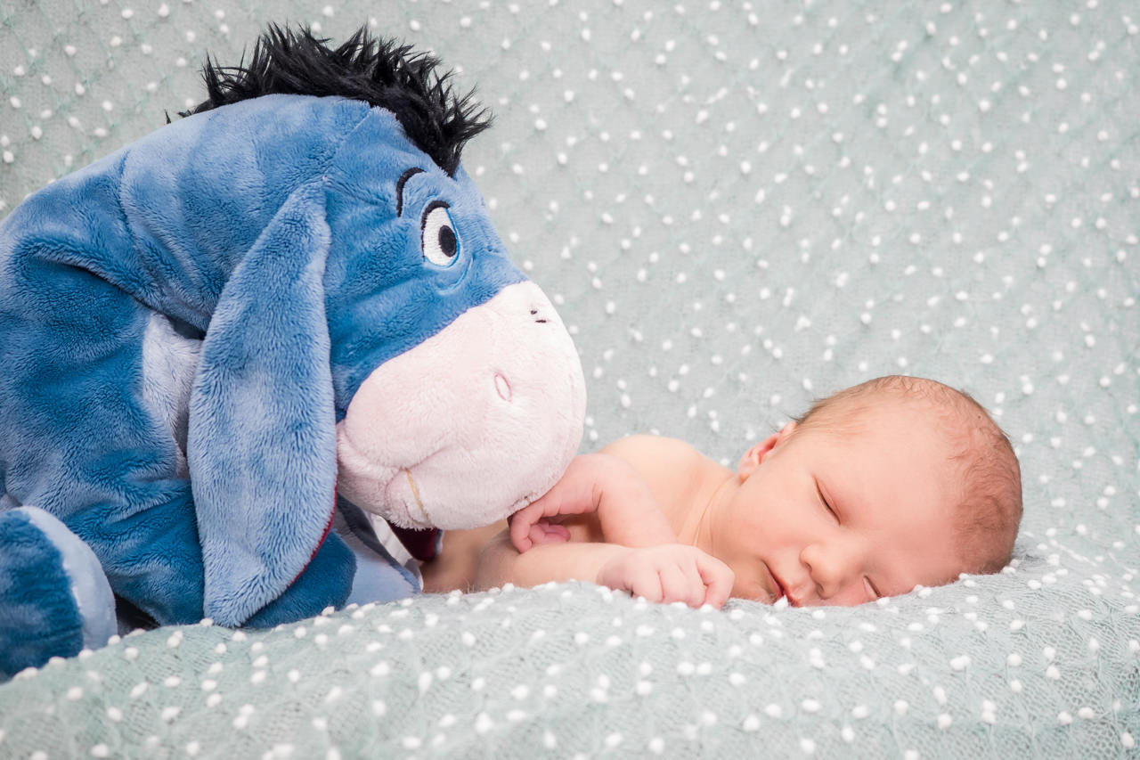 Newbornfotografin Dresden