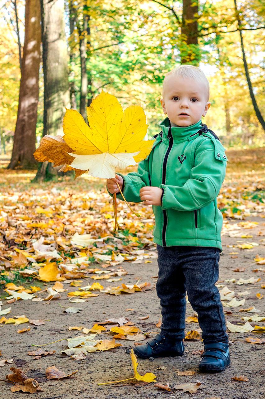 Kind im Herbst mit Ahornblättern