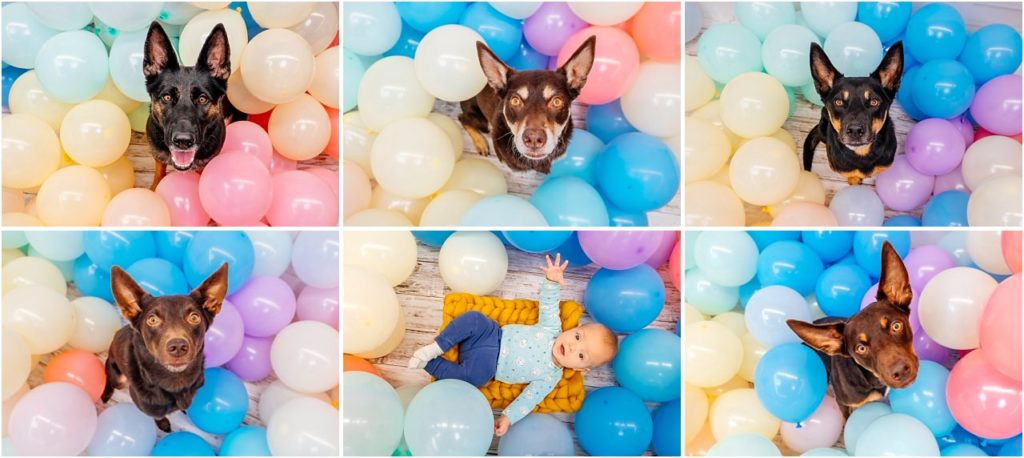 Kinderfotos Dresden Kinderfotografin Luftballon